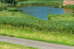 Große Teichansicht mit Straße Lizenzfreies Stockfoto