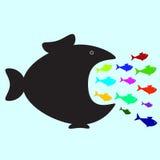 Große und kleine Fische Stockbild