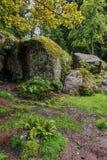 Große und kleine Flusssteine schaffen eine schöne Zusammensetzung in Form einer Grottenhöhle Lizenzfreie Stockfotografie