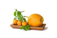 Große und kleine Orangen in einer Schüssel lokalisiert auf weißem Hintergrund Stockfotografie