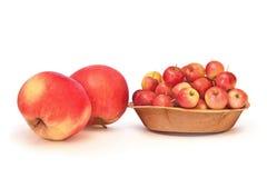 Große und Paradiesäpfel lokalisiert auf Weiß Stockbilder