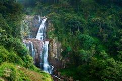 Große Wasserfälle im grünen tropischen Wald lizenzfreies stockfoto
