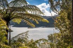 Große Wasserreservoirverdammung in Neuseeland stockbilder