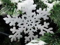 Große weiße Schneeflocke Stockbilder
