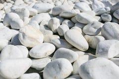 Große weiße Steine in einem Garten Stockbild