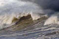 Große Welle Stockbilder