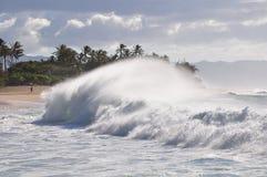 Große Welle auf Sonnenuntergang-Strand, Oahu, Hawaii lizenzfreie stockfotografie