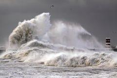 Große Wellen Stockfoto