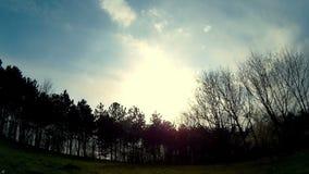 Große Wolken, die über die Bäume sich bewegen stock video