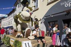 Große Zahlen von Narzissen, die in den Alpenwiesen wachsen, Schwimmen im See Festival Narzissenfest stockfotos