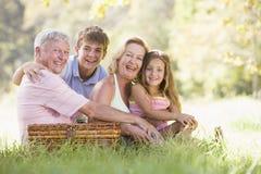 Großeltern, die ein Picknick mit Enkelkindern haben lizenzfreie stockfotos