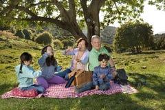 Großelternenkelkindpicknick Stockfotos