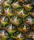 Großer Abschluss oben einer Ananas stockbild