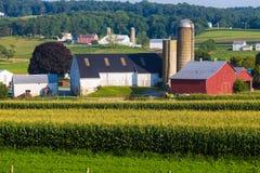 Großer amischer Bauernhof in Lancaster County Stockfotografie