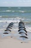 Großer Ausfluß leitet die Entladung des Abflusses in das Meer Lizenzfreie Stockfotografie