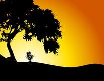 Großer Baum, der wenig Baum-Sonnenuntergang schützt Lizenzfreie Stockfotografie