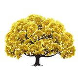 Großer Baum mit gelbem Laub Stockfoto