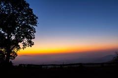 Großer Baum silhouettiert mit Schicht des Berges lizenzfreies stockfoto