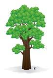 Großer Baum-Vektor Lizenzfreie Stockbilder