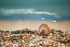 Großer britischer Sommer Pebble Beach mit Seeoberteil Stockfotos