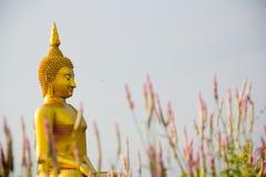 Großer Buddha in Angtong, Thailand Stockfotos