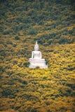 Großer Buddha auf dem Berg dazu durch Wald Lizenzfreies Stockfoto