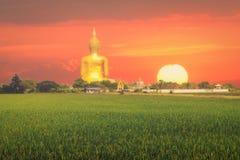 Großer Buddha auf Sonnenaufganghintergrund Stockbilder