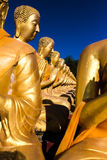 Großer Buddha in Buddhismus-Memorial Park-Öffentlichkeit Templel Stockfoto