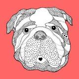 Großer Bulldoggenzuckerschädelkopf, netter Hundstag der Toten, Vektor Lizenzfreies Stockbild