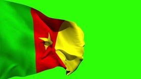 Großer Cameroon-Staatsflaggeschlag stock footage