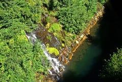 Großer chilenischer Fluss Stockfotos