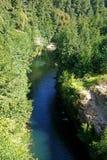 Großer chilenischer Fluss Stockbild