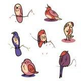 Großer entworfener Satz Karikaturvögel Stockbild