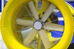 Großer Fan Stockfoto