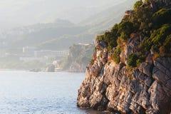 Großer Felsen auf Wasser mit Bäumen vor einem nebelhaften Ufer Lizenzfreie Stockfotos