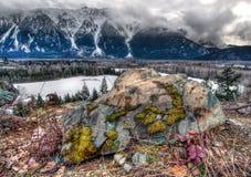 Großer Felsen mit buntem Moos Stockfotografie