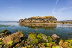 Großer Felsen mit Reflexion Stockfoto