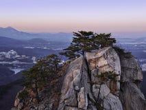 Großer Felsen und ein Wald mit Koniferenbäumen in den Bergen Lizenzfreie Stockfotografie