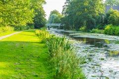 Großer Fluss in einer Wasserlandschaft mit Gras und Bäumen Stockfotografie