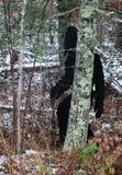 Großer Fuß, der durch einen Wald geht lizenzfreie stockfotografie