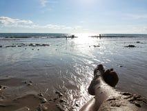 Großer Fuß mit Sand auf dem Strand Stockfoto