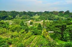 Großer Garten in der Stadt Stockfotografie