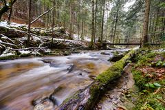 Großer gefallener Stamm der Fichte, Tanne im Wald, Gebirgsfluss, Strom, Nebenfluss mit Stromschnellen im Spätherbst, früher Winte Stockfoto