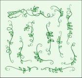 Großer grünen auf Lager gezeichnete Verzierungserbsen und -blätter des Satzes EinLine vektor abbildung