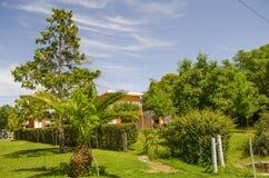 Großer grüner Garten Stockfotografie