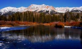 Großer hölzerner Fluss im Winter Lizenzfreies Stockfoto