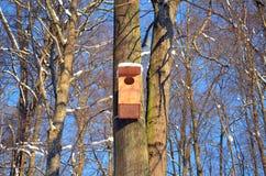 Großer hölzerner Verschachtelungkasten, der am blauen Himmel des Baums hängt Stockfoto