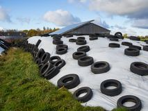 Großer Haufen von Silage als Tierfutter bedeckt in den Gummi- Reifen und im weißen Plastik auf Bauernhof in Nord-Deutschland stockfotografie