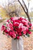 Großer heller Luxusblumenstrauß in den Händen eines netten Mädchens Hundert Gartenrosen, Vielzahl von David Austin Drei Arten lizenzfreie stockbilder
