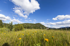 Großer Himmel EZ, Montana Lizenzfreies Stockbild